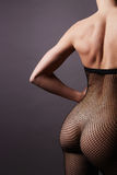 Sexy back of nude girl in Stockings Royalty Free Stock Image