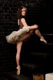 Sexy ballerina in tutu climbing stairs. Sexy professional ballerina in tutu climbing stairs on old dark brick background Royalty Free Stock Images