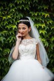 Sexy beautiful brunette bride in white dress posing surrounded b Stock Photo