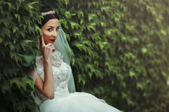 Sexy beautiful brunette bride in white dress posing surrounded b Royalty Free Stock Photos