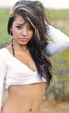 beautiful Latina royalty free stock images