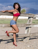 Sexy beautiful latino model. Wearing red tube top with long flowing hair,denim daisy duke shorts.  Image shot in Tucson, AZ Stock Photos
