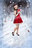 Sexy and beautiful Santa girl. In red Santa's dress and hat over winter forest background. Christmas card Royalty Free Stock Image
