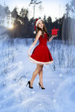 Sexy and beautiful Santa girl. In red Santa's dress and hat over winter forest background. Christmas card Stock Photography