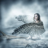 beautiful woman with birds wings Stock Image
