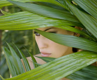 Sexy beautiful woman hiding behind the palm leaves. Beautiful st. Sexy beautiful woman hiding behind the palm leaves like a panther in the in the tropical forest Stock Images