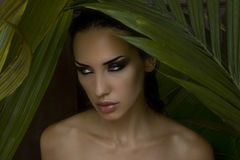 Sexy beautiful woman hiding behind the palm leaves. Beautiful st. Sexy beautiful woman hiding behind the palm leaves like a panther in the in the tropical forest Royalty Free Stock Photo