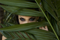 Sexy beautiful woman hiding behind the palm leaves. Beautiful st Royalty Free Stock Images