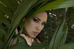 Sexy beautiful woman hiding behind the palm leaves. Beautiful st Royalty Free Stock Photography