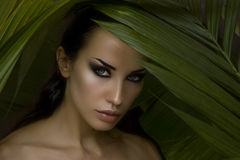 Sexy beautiful woman hiding behind the palm leaves.  Stock Images