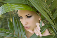 Sexy beautiful woman hiding behind the palm leaves.  Stock Photos