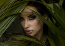 Sexy beautiful woman hiding behind the palm leaves.  Stock Image