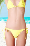 Sexy belly of fit  woman in bikini. Stock Photos