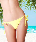 Sexy belly of fit woman in bikini. Royalty Free Stock Images