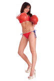 Sexy bikini boxer posing in style Royalty Free Stock Images
