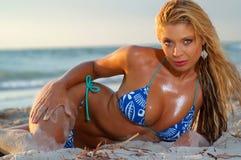 Sexy bikinimeisje Stock Afbeeldingen