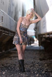 Sexy blond fashion girl Royalty Free Stock Photos