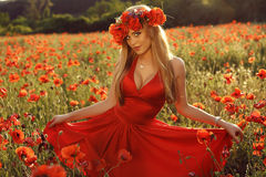 Sexy blond girl in elegant dress posing in summer field of red poppies Royalty Free Stock Photography