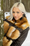 Sexy blond girl in the woods near a tree. Winter Royalty Free Stock Images