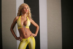 Sexy blond woman Stock Photography