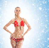 A sexy blond woman in erotic lingerie on a snowy background Royalty Free Stock Photo