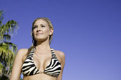 Sexy blond woman wearing swimsuit Royalty Free Stock Photography