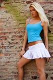 Sexy blonde fashion model Stock Photos