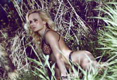 Sexy blonde girl in the jungle. Royalty Free Stock Photos