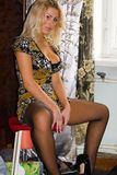 Sexy blonde haired vrouw Royalty-vrije Stock Fotografie