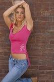 Sexy blonde vrouwenmodel Stock Afbeeldingen