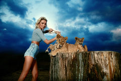 blonde woman playing with lion cub on Royalty Free Stock Photography