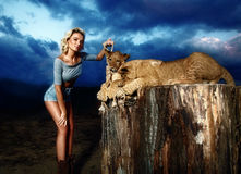 blonde woman playing with lion cub on Stock Photos