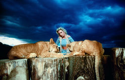 Sexy blonde woman playing with lion cub on Stock Photo