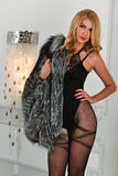 Sexy blonde woman posing in an interior wearing sensual lingerie and fur coat. Royalty Free Stock Image