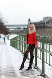 Sexy blonde woman in red leather jacket and mini skirt. Beautiful young woman standing at a handrail in winter time Stock Images