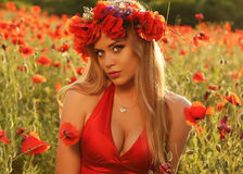 Sexy blondes Mädchen im eleganten Kleid, das auf dem Sommergebiet von roten Mohnblumen aufwirft Stockfotografie
