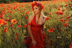 Sexy blondes Mädchen im eleganten Kleid, das auf dem Sommergebiet von roten Mohnblumen aufwirft Stockfotos