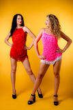 Sexy blondes und Brunette im Studio Stockbild