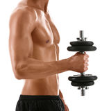body of muscular man with weight Stock Photo