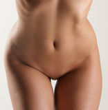 Sexy body of a young caucasian woman Stock Image