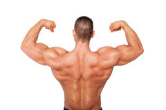 Sexy bodybuilder showing biceps. Royalty Free Stock Photos