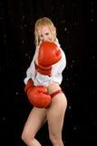 Sexy boxer Royalty Free Stock Photo
