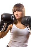 Sexy boxer Stock Images