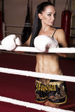 Sexy boxer girl with dark hair and sportive body posing on ring Stock Images