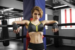 Sexy boxing girl stands leaned on ropes of competition ring. Fashionable portrait of luxurious female model Royalty Free Stock Images