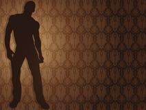 Sexy boy against damask background. Sexy boy silhouette against damask background Stock Images