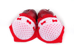 brassiere royalty free stock image