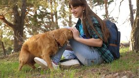 Sexy breeder girl is training a dog. Woman traveler with a dog. Teamwork. Favorite pet. Care and raising dogs. The girl. Sexy breeder girl is training dog. Woman stock photo