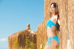 brown haired girl in a bikini stock image