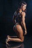 Sexy brunette fitness woman with perfect back and buttocks posing on knees wet over water drops in studio Royalty Free Stock Photo